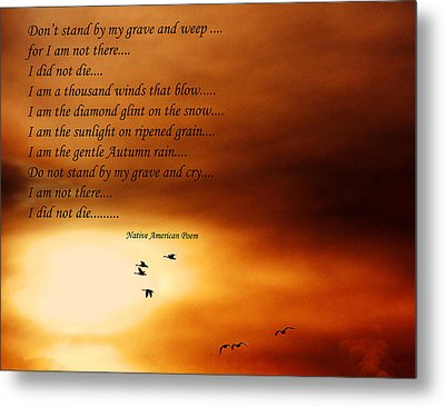 Do Not Weep Metal Print by Denise Romano