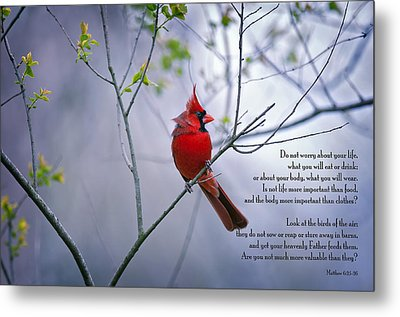 Do Not Worry . . .  Metal Print by Bonnie Barry