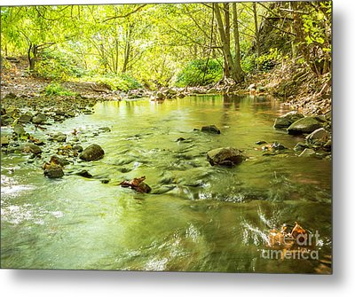 Dog Creek Metal Print by Linda Steider