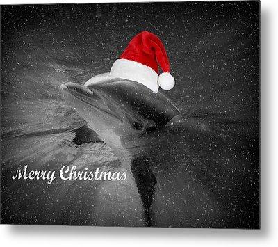 Dolphin Christmas Metal Print by Amanda Eberly-Kudamik