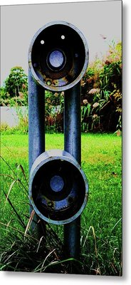 Metal Print featuring the photograph Dommer by Cyryn Fyrcyd