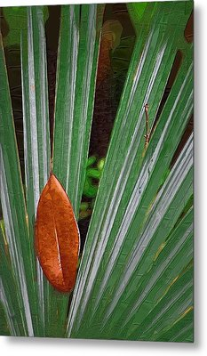Metal Print featuring the photograph Don't Leaf by Donna Bentley