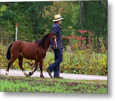 Down A Country Road Metal Print by Linda Mishler