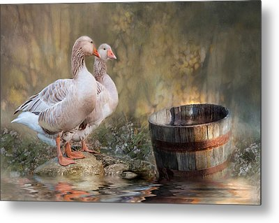 Metal Print featuring the photograph Down By The River by Robin-Lee Vieira