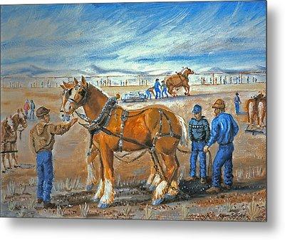 Draft Horse Pull Metal Print