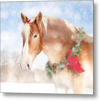 Dream Of A Gift Horse Metal Print