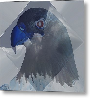 Dreaming In Eagle Vision Metal Print