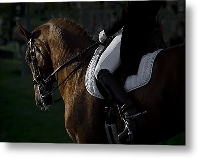 Metal Print featuring the photograph Dressage D5284 by Wes and Dotty Weber