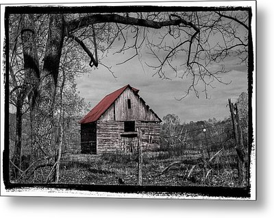 Dressed In Red Metal Print by Debra and Dave Vanderlaan