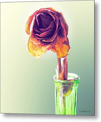 Dried Rose Metal Print by Brian Wallace
