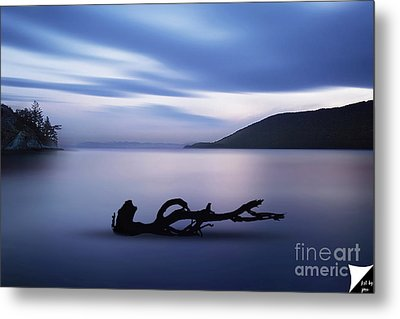Metal Print featuring the photograph Driftwood by Jim  Hatch