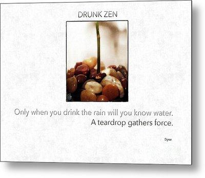 Drunk Zen  Metal Print by Steven Digman