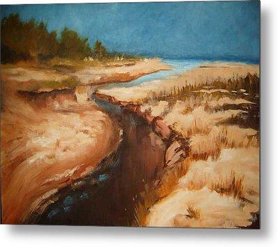 Dry River Bed Metal Print by Nellie Visser