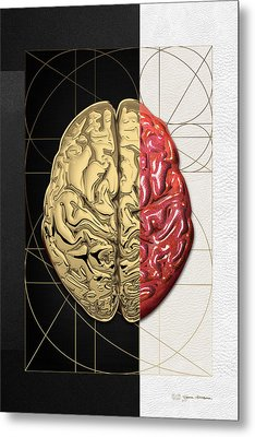 Dualities - Half-gold Human Brain On Black And White Canvas Metal Print