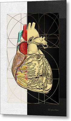Dualities - Half-gold Human Heart On Black And White Canvas Metal Print
