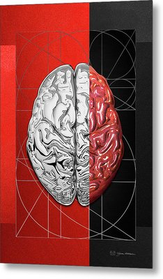 Dualities - Half-silver Human Brain On Red And Black Canvas Metal Print