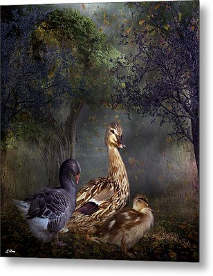 Duck Duck Goose Metal Print by G Berry