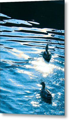 Metal Print featuring the painting Ducks At Twilight by Ginny Gaura