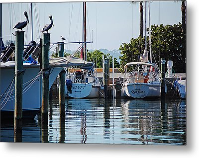 Duneden Fl. Metal Print by Robert Meanor