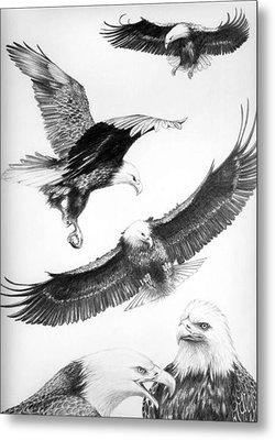 Eagles Gathering Metal Print by Bob Patterson