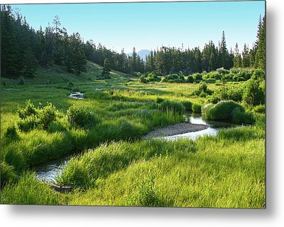 Metal Print featuring the photograph Early Morning Along The Stream by Marie Leslie
