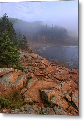 Early Morning Fog  Metal Print by Stephen  Vecchiotti