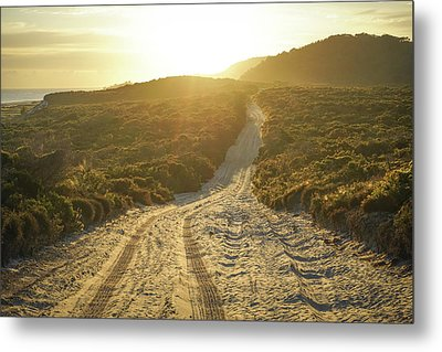 Early Morning Light On 4wd Sand Track Metal Print
