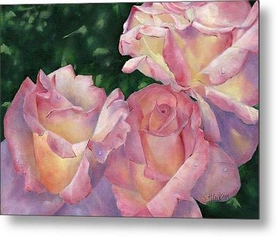 Early Morning Roses Metal Print by Sheryl Heatherly Hawkins