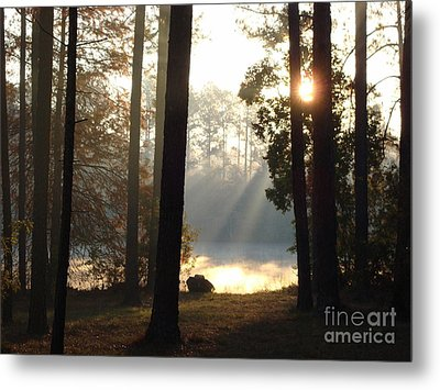 Early Morning Sun Rays On The Lake Metal Print by Cindy Hudson