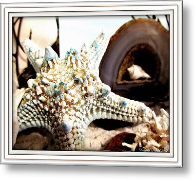 Earth's Jewels Metal Print