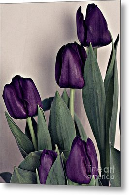 A Display Of Tulips Metal Print by Sherry Hallemeier