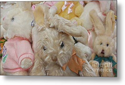 Metal Print featuring the photograph Easter Bunnies by Benanne Stiens