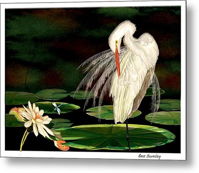 Metal Print featuring the painting Egret Pruning In Lily Pads by Anne Beverley-Stamps