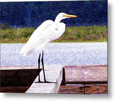 Egretful Morning Metal Print by Laura Brightwood