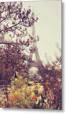 Eiffel Tower, Paris Metal Print by Liz Rusby