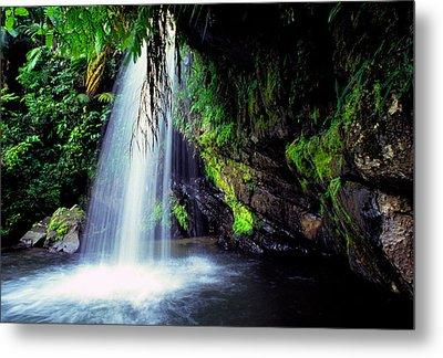 El Yunque Waterfall Metal Print by Thomas R Fletcher