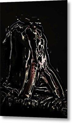 Elation Metal Print by Naman Imagery