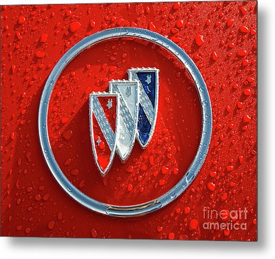 Metal Print featuring the photograph Emblem by Dennis Hedberg