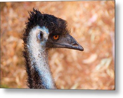 Emu Profile Metal Print by Mike  Dawson