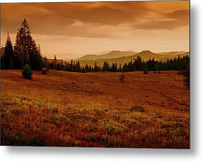 Metal Print featuring the photograph End Of Day by Frank Wilson