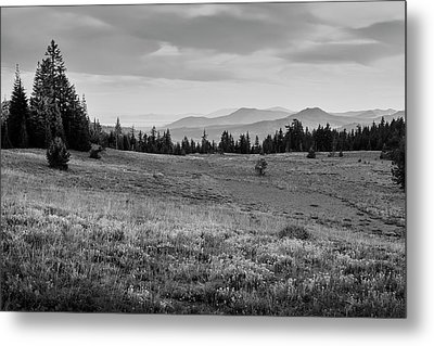 Metal Print featuring the photograph End Of Day In B W by Frank Wilson