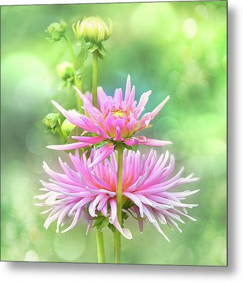 Metal Print featuring the photograph Enduring Grace by John Poon