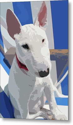 English Bull Terrier Metal Print