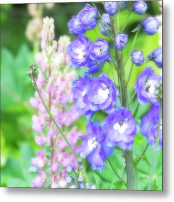 Metal Print featuring the photograph Escape To The Garden by Bonnie Bruno