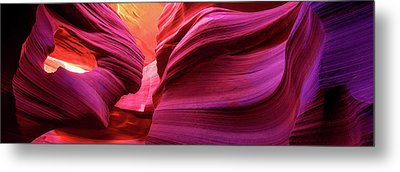 Essence Metal Print by Mikes Nature