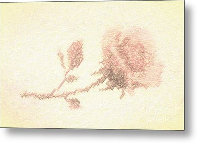 Metal Print featuring the photograph Etched Red Rose by Linda Phelps