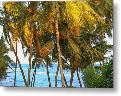 Evening Palms In Trade Winds Metal Print by Bonnie Follett