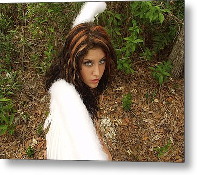 Everglades City Fl. Professional Photographer 4177 Metal Print