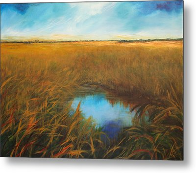 Everglades Metal Print by Michele Hollister - for Nancy Asbell