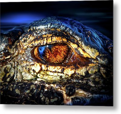 Eye Of The Apex Metal Print